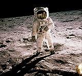 NASApete Astronaut Buzz Aldrin auf dem Mond 1969, Fototapete, Bildtapete, XXXL-Poster, 5 Bahnen, 232,5x216cm