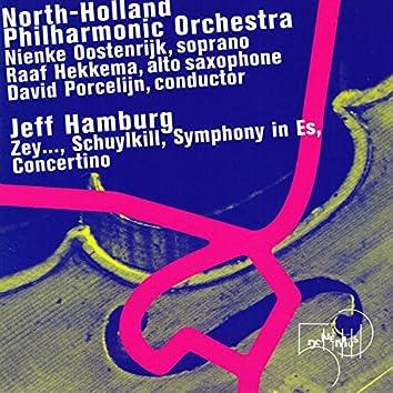 Zey... / Schuylkill / Symphony in Es / Concertino