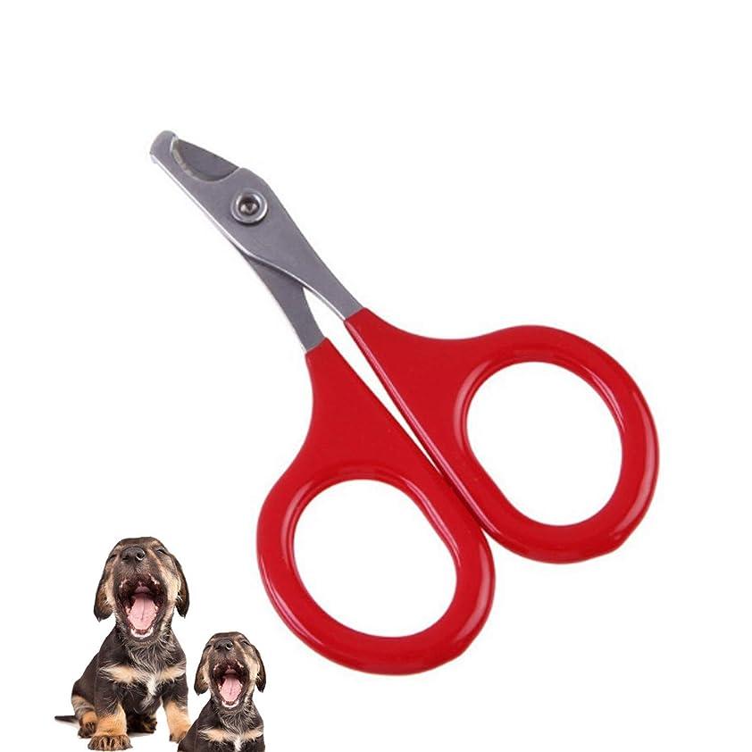 吸う好奇心債務シザー カットシザー 10個入りネイルクリッパー - プロのネイルネイルトリマー - 安全な、鋭角のブレードペットネイルトリマー&ペットネイルクリッパー - 小型犬や猫のためのネコ爪切り、3IN ヘアカット シザー