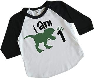 One Birthday Dinosaur Shirt for Boys, First Birthday Dinosaur Outfit