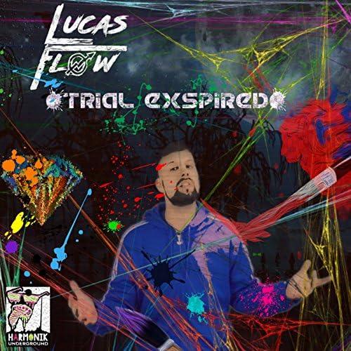 Lucas Flow