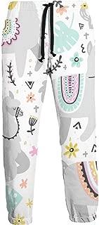 Amazon.es: Ye Hua - Pantalones / Pantalones y pantalones cortos ...