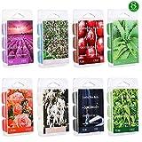XYUT Scented Wax Melts -Set of 8 (2.5 oz) Assorted Wax Warmer Cubes/Tarts- Apple, Aloe, Green Tea, Sandalwood, Rose, Vanilla, Jasmine, Lavender