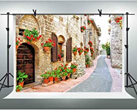 FHZON 10x7ft Italy Street Backdrops for Photography Famous European Buildings Wedding Photo Background Spring Flowers Stone Path Girls Studio Photo Portrait Background LSFH617