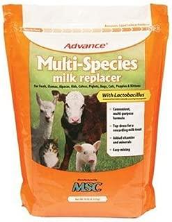 Advance Multi-Species Milk Replacer - w/ Lactobacillus - 10 Lb
