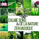 50 Calme sons de la nature & Zen...