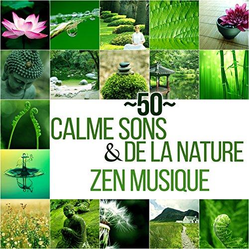 50 Calme sons de la nature & Zen musique - Détente et relaxation avec bruits de la nature et New Age, Bonne humeur, Clarifier idées, Se calmer, Se relaxer et tranquilliser (Yoga, Pilates, Qi gong)