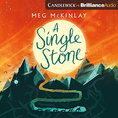 A Single Stone audiobook cover art
