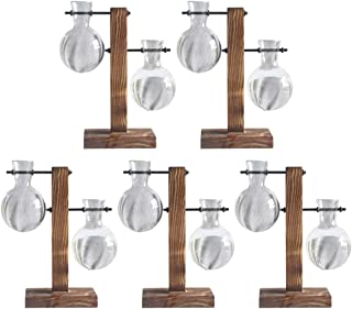 Fenteer 5 Pack Hydroponic Vase with Retro Wooden Stand Propagation Stations for Hydroponics Plants Office Desk Wedding Dec...
