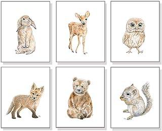 Woodland Nursery Decor Prints Set of 6 Unframed, Woodland Nursery Wall Art, Baby Woodland Animal Watercolors, Bear Deer Fox Bunny Owl