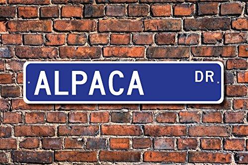 Stree Schild Alpaka Geschenk Schild South American Camel Mountain Werewolf Zoo Gehäuse Metall Aluminium Schild Wandschild Dekoration