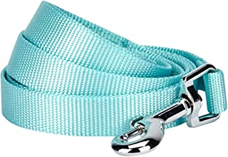 """Blueberry Pet Durable Classic Dog Leash 5 ft x 5/8"""", Mint Blue, Small, Basic Nylon Leashes for Dogs"""