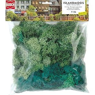 Large Bag Green Lichen