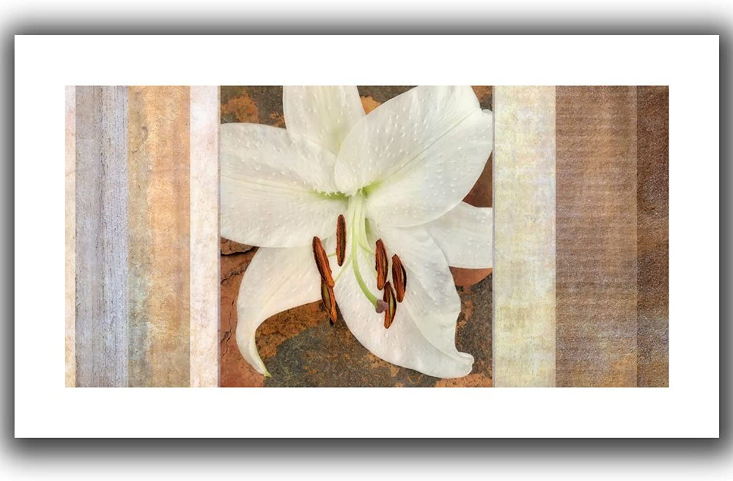 ArtWall Cora Niele 'Ivory' Unwrapped Canvas Print, 16 by 28-Inch