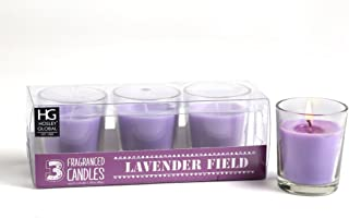 Hosley Highly Fragranced Lavender Fields Filled Glass Candles (Set of 3)