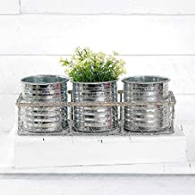 Blossom Bucket 201-70165 Wire Basket with 3 Galvanized Tin Containers, 11-inch Length