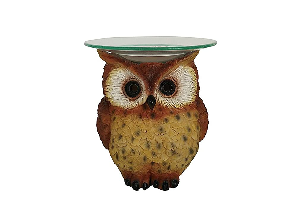 Polyresin Owl Oil Burner with dimmer Switch
