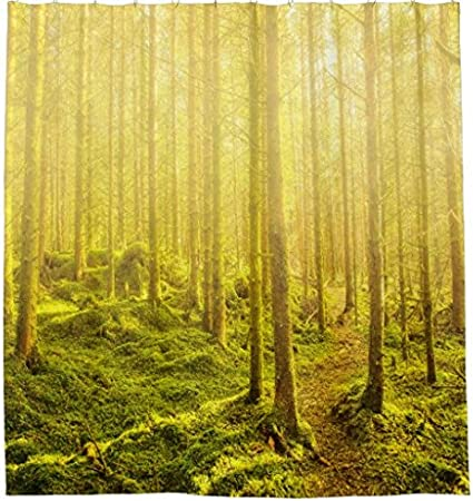 Waterproof Fabric Bathroom Curtains Home Bath Decor A Winding Path Through The Forest in Golden Light Shower Curtain
