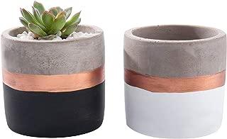 Opsuper Concrete Succulent Pots, 3.1 Inches Set of 2 Modern Succulent Planter with Drainage, Decor for Desks Bookshelves Windowsills