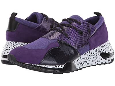 Steve Madden Ridge (Purple Multi) Men