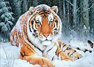 DIY 5D Diamond Painting by Number Kit, Snow Tiger Crystal Rhinestone Embroidery Cross Stitch Arts Craft Supply Canvas Wall Decor
