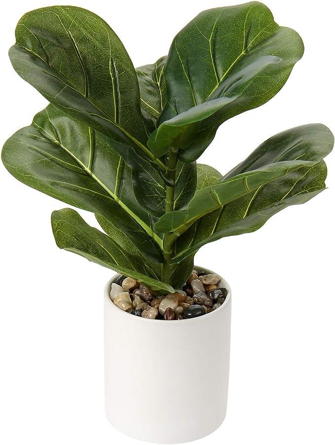 57 opinioni per Breve piante artificiali da 31 cm, decorazione per la casa tropicale finto ficus