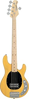 Sterling By MusicMan Sterling by Music Man StingRay Classic Ray25CA Bass Guitar in Butterscotch, 5-String, Right, (RAY25CA-BSC-M1)