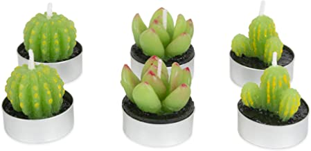 DII CAMZ11094 Decorative Succulent Cactus Tea light Candle with Paraffin Wax for Home Décor & Easy Gift Idea, 1.5x1.5, Set