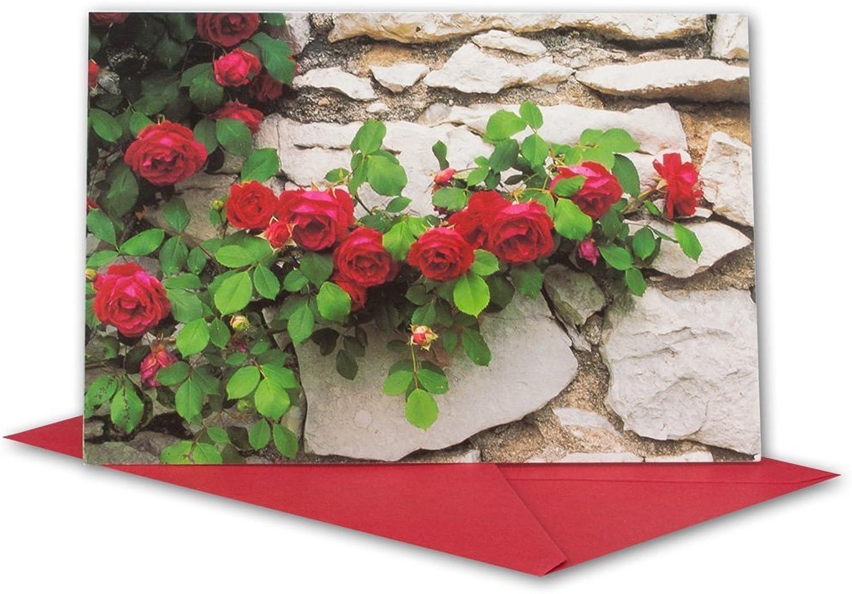 Glückwunschkarten Set I rote Rosanranke auf Steinmauer mit rotem Umschlag I 90 Stück I B6 17,0 x 11,5 cm I klappbare Grußkarte für jeden Anlass I ob Geburt I Kommunion oder Hochzeit - Geburtstagskarte B07G3BBCJ7    | Genial