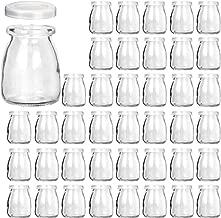 yogurt maker with glass jars