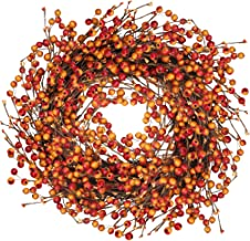 Winlyn Fall Berry Wreath 20 Inches Harvest Door Wreath for Autumn, Halloween, Thanksgiving Decor