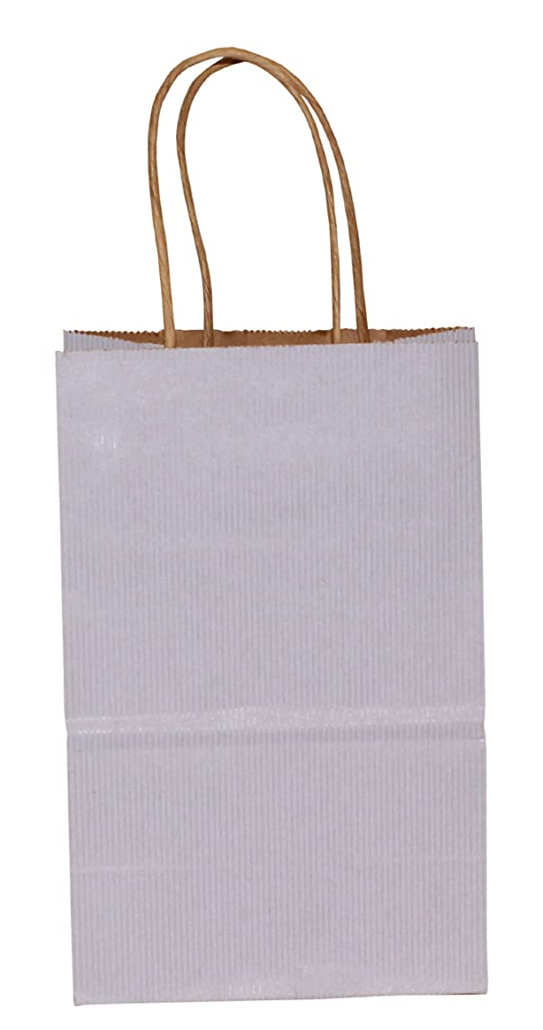 Premier Packaging AMZ-294012 15 Count Pinstripe Shopper Gift Bag, 5.25 by 8.25-Inch, Wisteria