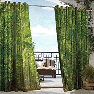 S Brave Sky Woodland Decor Outdoor Curtain Wall Deciduous Forest in Summertime Foliage Sunlight Romantic Holidays Scenics Outdoor Curtain Panels for Patio Waterproof Green