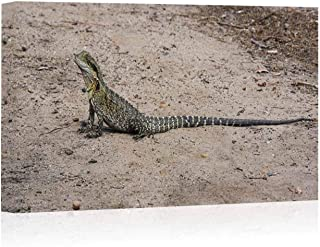 Eastern Water Dragon Canvas Art Wall Decor,Physignathus lesueurii Painting Wall Art Picture Print on Canvas,12