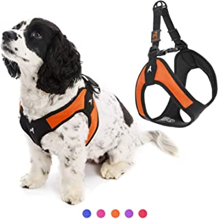 Gooby - Escape Free Easy Fit Harness, Small Dog Step-In Harness for Dogs that Like to Escape Their Harness, Orange, X-Small