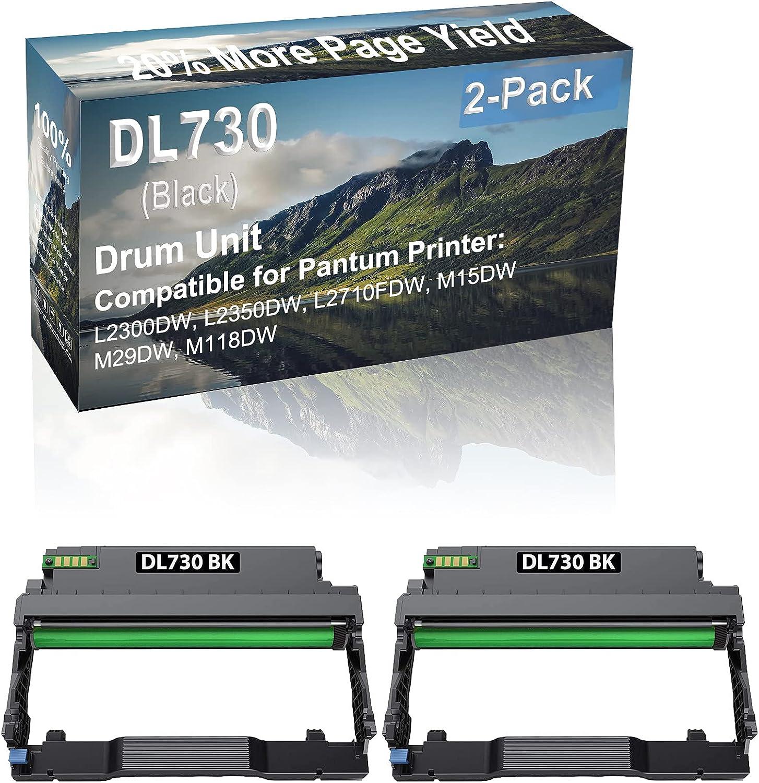 2-Pack Compatible DL730 Drum Kit use for Pantum L2300DW, L2350DW Printer (Black)