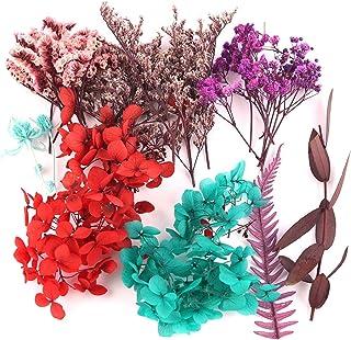 Vraies Fleurs Pressées Séchées Pour Bougie Parfumée DIY Les Peintures Végétales Faites À La Main, Les Bouteilles Flottante...