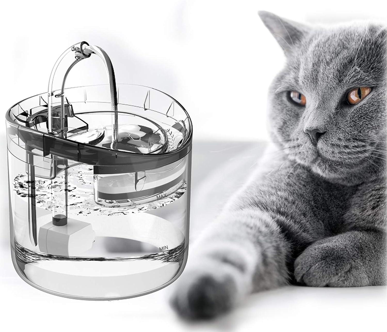 bebedeo fuente para gatos
