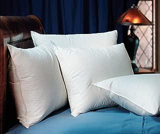 Pacific Coast Touch of Down Standard Pillow Set (2 Standard Pillows)