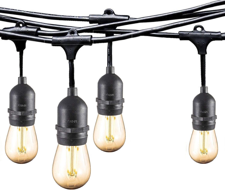 Ashialight 12 Volt Outdoor String Lights with Transformer and US Plug - Low Voltage, 48 Ft, 4W15pcs Edison 12 Volt LED Bulb,Weatherproof, Commercial Grade Bistro Cafe Lights for Patio,Gazebo,Backyard