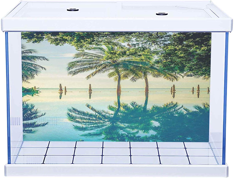 Fish Tank Wallpaper Aquarium Background with Landscape Washington Mall Max 49% OFF Pool Tree