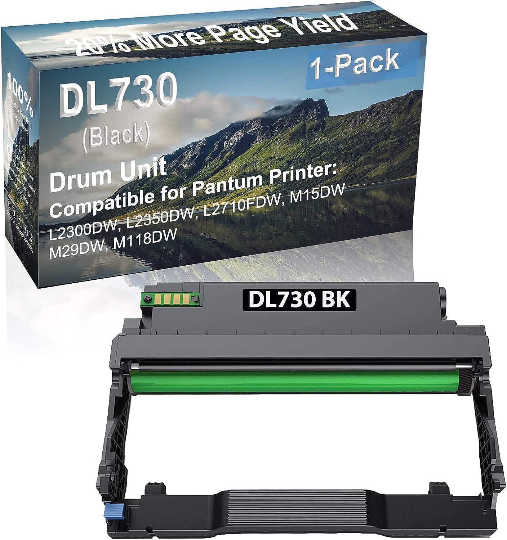 1-Pack Compatible DL730 Drum Kit use for Pantum L2300DW, L2350DW Printer (Black)