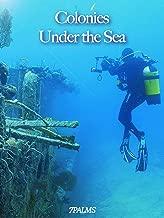Colonies Under the Sea