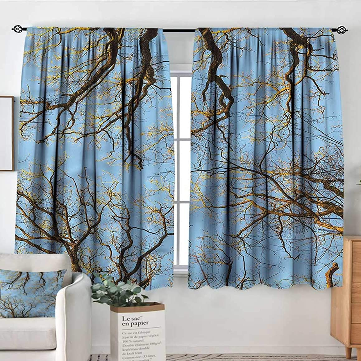 Anzhutwelve Nature,Indoor Curtain Vibrant Sky with Trees 72