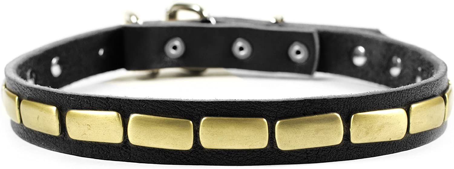 Dean and Tyler PLATED BEAUTY , Leather Dog Collar with Attractive Antiqued Plate  Black  Size 12Inch by 1Inch  Fits Neck 10Inch to 14Inch