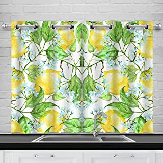INTERESTPRINT Lemon Flowers Leaves Citrus Fruits Bedding Blackout Room Darkening and Thermal Insulating Window Curtains, 2 Panels Set, 26x39 Inch with Grommets