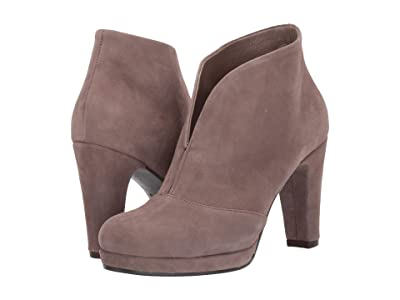 Cordani Noble (Taupe Suede) Women
