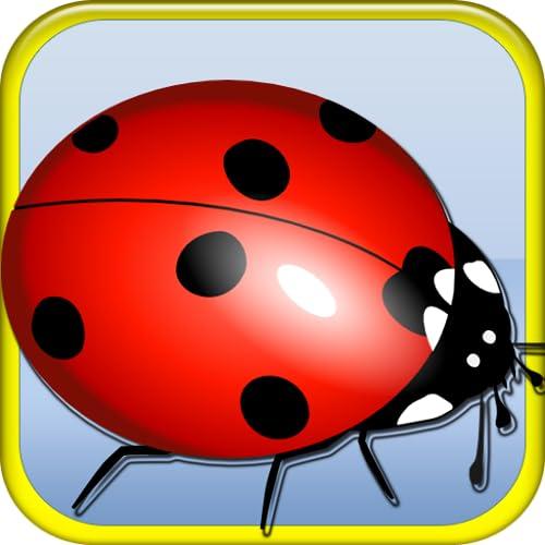 Hungry Ladybug