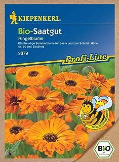 Ringelblume Oranja Bio-Saatgut von Kiepenkerl