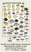 Hawaii Reef Fish #1 Identification Guide (Laminated Single Sheet Field Guide) (Hawaii Field Guides) (v. 1)
